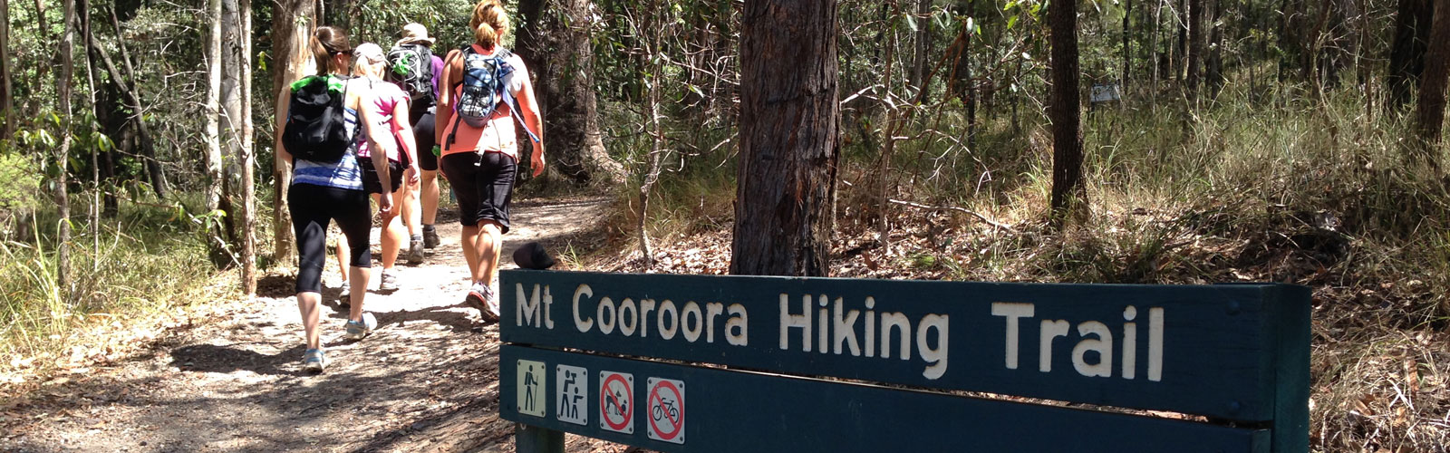 Mt Cooroora Hiking trail project