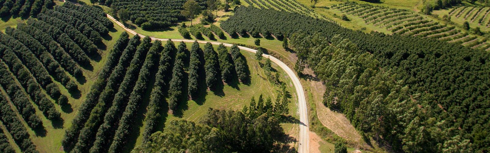 Noosa region Biosphere