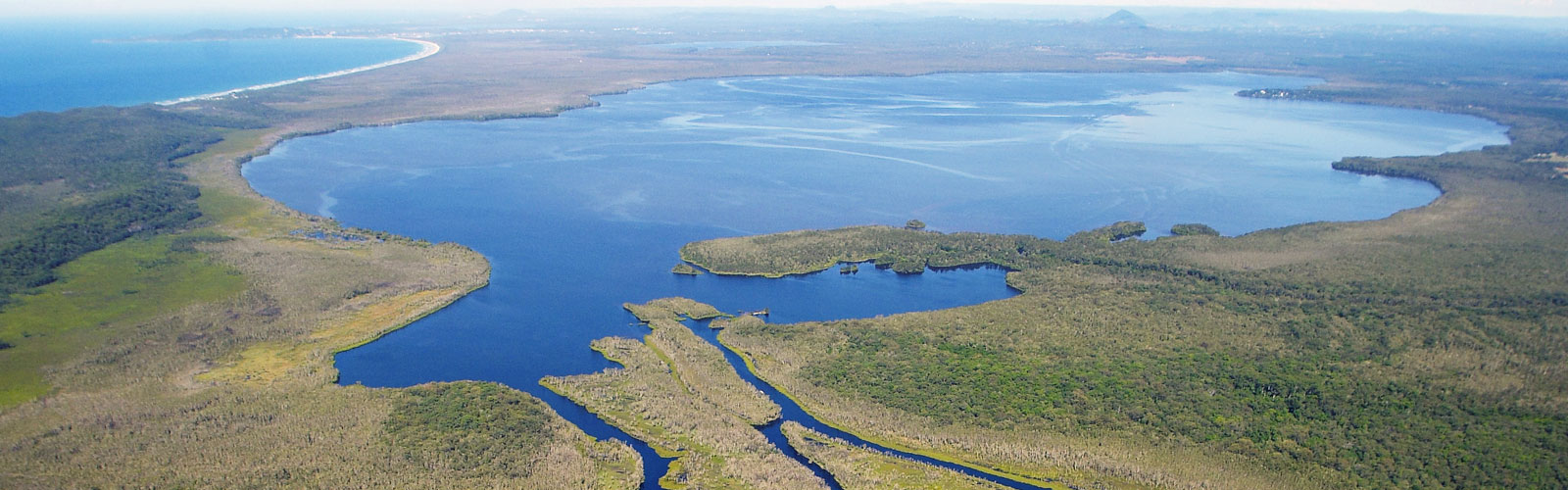Biodiversity in the Noosa River System